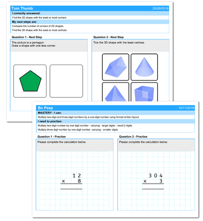 Example maths next steps statements and questions